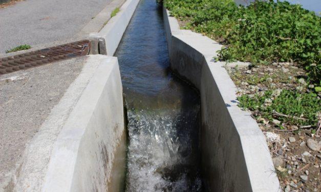 耕作放棄地の埋もれた水路復活   その1